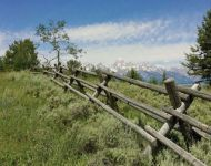 Wyoming Fence Line